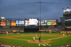 NYY Field 16